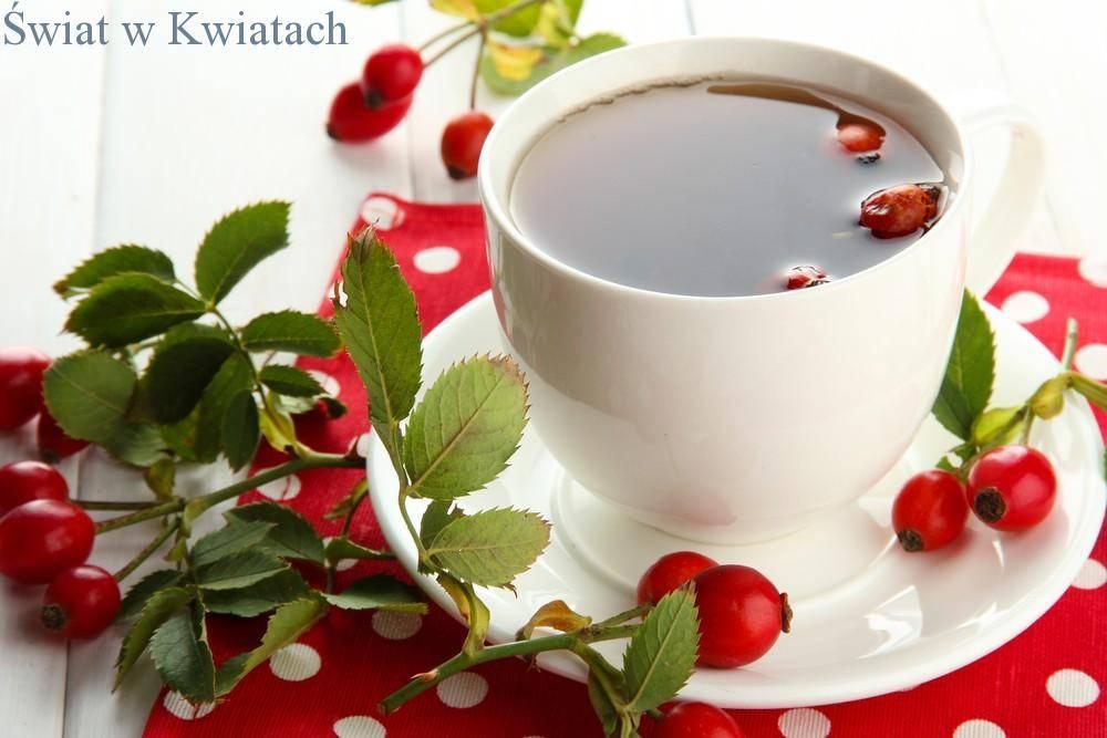 herbata z róży