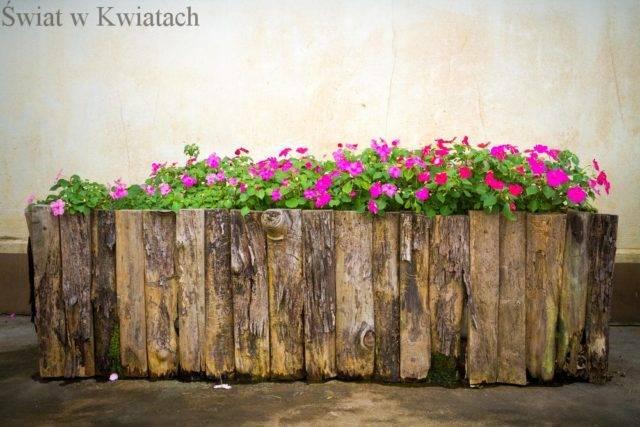 Dobór pojemników do uprawy roślin na balkonie