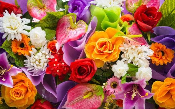 Symbolika i znaczenie kwiatów