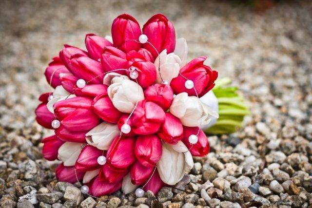 znaczenie i symbolika kwiatów bukiet tulipanów