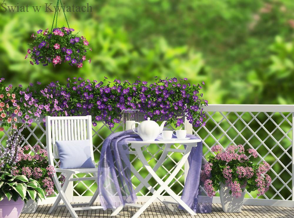 Kwiaty Na Taras Swiat W Kwiatach