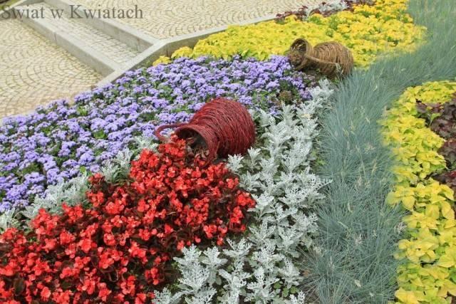 rabaty kwiatowe - rabata formalna