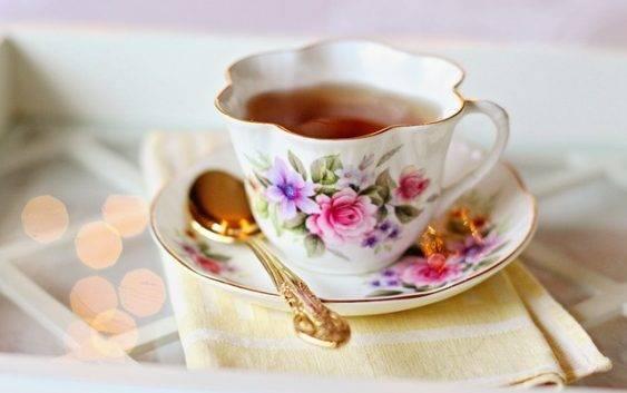 Skrzyp polny przepisy na herbatkę, nalewkę itd.