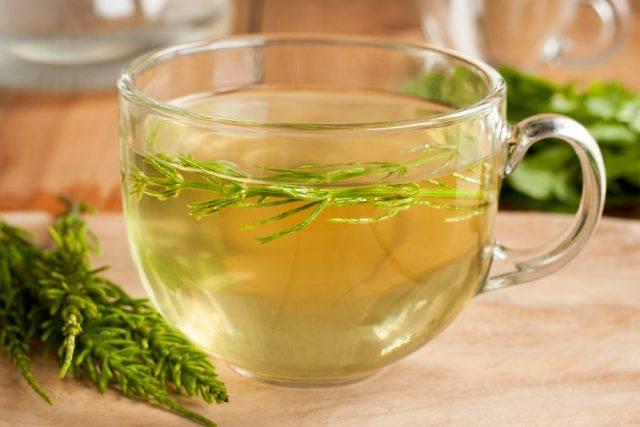 skrzyp polny przepisy na herbatki