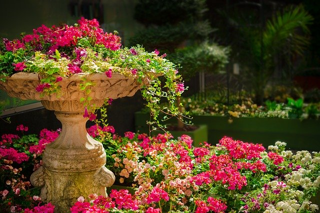 jak zaprojektować ogród