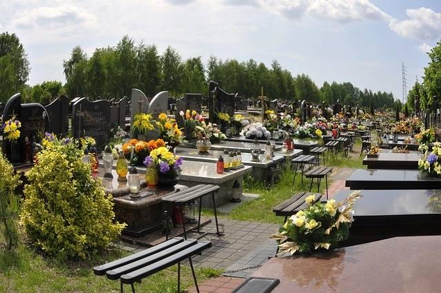 Kwiaty Na Cmentarz Wybor Roslin I Kwiatow Na Grob