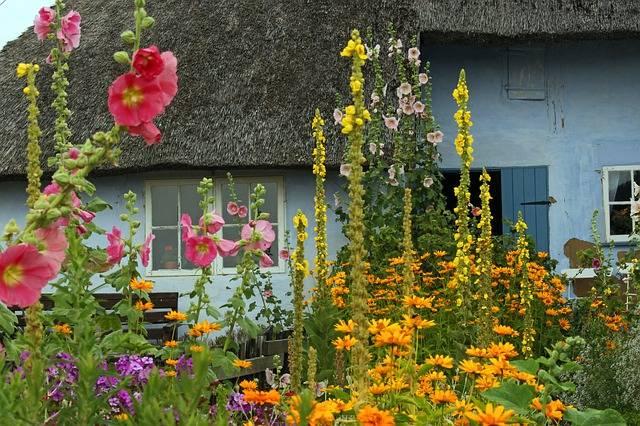 Ogród przed domem na wsi
