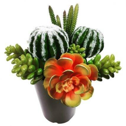 sztuczne kaktusy na piku